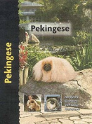 Pekingese (Pet love)