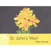 Understanding St. John's Wort
