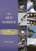 The The Hen Harrier
