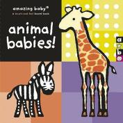 Amazing Baby: Animal Babies