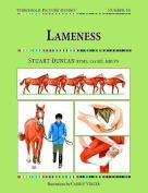 Lameness