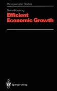 Efficient Economic Growth