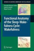 Functional Anatomy of the Sleep-wakefulness Cycle