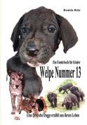Welpe Nummer 13 Ein Hundekind Erzahlt Aus Seinem Leben Die Geschichte Einer Deutschen Dogge [GER]