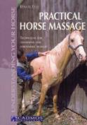 Practical Horse Massage