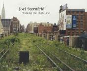 Joel Sternfeld