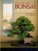 The Beauty of Bonsai