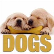 Dogs (Minicube Book)