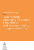 Hyperbolicity equations for cusped 3-manifolds and volume-rigidity of representations