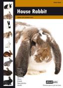 House Rabbit
