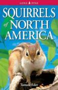 Squirrels of North America