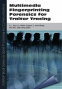 Multimedia Fingerprinting Forensics for Traitor Tracing