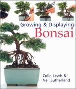 Growing & Displaying Bonsai
