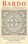Bardo: Interval of Possibility