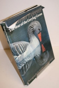 The Year of the Greylag Goose