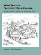 What Works in Preventing Rural Violence