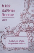 An Article about Growing Blackcurrants Including Sections on Planting, Management, Harvest and Diseases