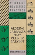 Growing Cabbages from Seed to Harvest