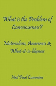 What is the Problem of Consciousness?