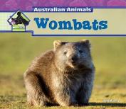 Wombats (Big Buddy Books