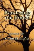 Rendering the Bones