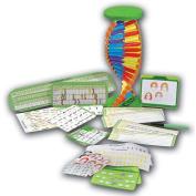 Edu Science CSI DNA Strand Build Kit