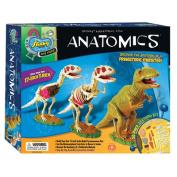 Anatomics