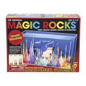 Magic Rocks - Shark