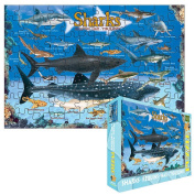 Sharks Jigsaw Puzzle for Kids, 100 pieces Eurographics
