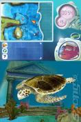 Dolphin Island - Underwater Adventures