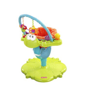 Fisher-Price Space Saver Bounce Spin Froggy Entertainer