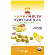 Happy Baby Food Happy Yoghurt Melts Banana Mango
