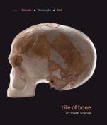 Life of Bone
