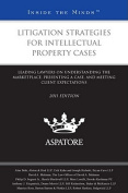 Litigation Strategies for Intellectual Property Cases