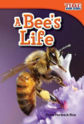 A Bee's Life (Upper Emergent) (Time for Kids Nonfiction Readers