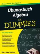Ubungsbuch Algebra Fur Dummies  [GER]