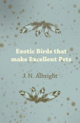 Exotic Birds That Make Excellent Pets