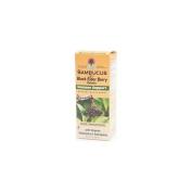 Nature's Answer Sambucus Black Elder Berry Extract, Immune Support 4 fl oz