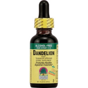 Nature's Answer Dandelion Root, Alcohol-Free Extract 1 fl oz