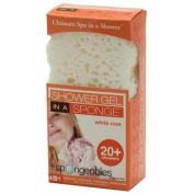 Spongeables Shower Gel In A Sponge, White Rose 20+, 1 sponge