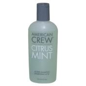 Citrus Mint Active Shampoo American Crew 4.2 oz Shampoo For Men