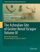 The Acheulian Site of Gesher Benot Ya'agov