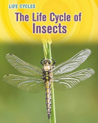 The Life Cycle of Insects (Life Cycles