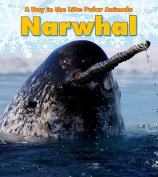 Narwhal (Day in the Life