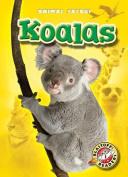 Koalas (Blastoff! Readers
