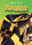Kraits (Blastoff! Readers