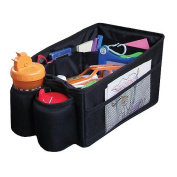 Sunshine Kids Travel Pal Car Organiser