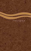 CEB Common English Church Bible, Casual Edition Paperback