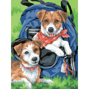 "Learn To Paint! Paint By Number Kit 23cm X12""-Back Pack Buddies"