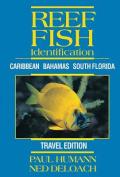 Reef Fish Identification